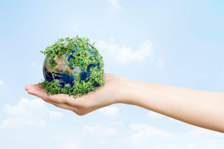 Sürdürülebilir Tedarik Zinciri: Yeşil Lojistiğin Faydaları Nelerdir?